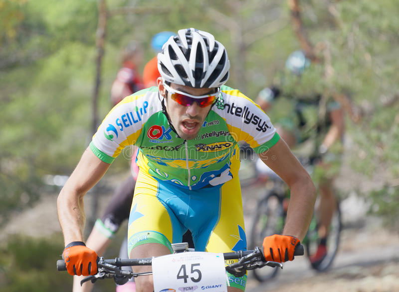 Groupe coloré de cyclistes de vélo de montagne dans la forêt photos stock