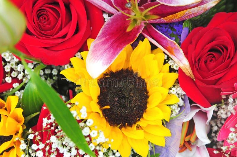 Groupe coloré de fleurs photo libre de droits