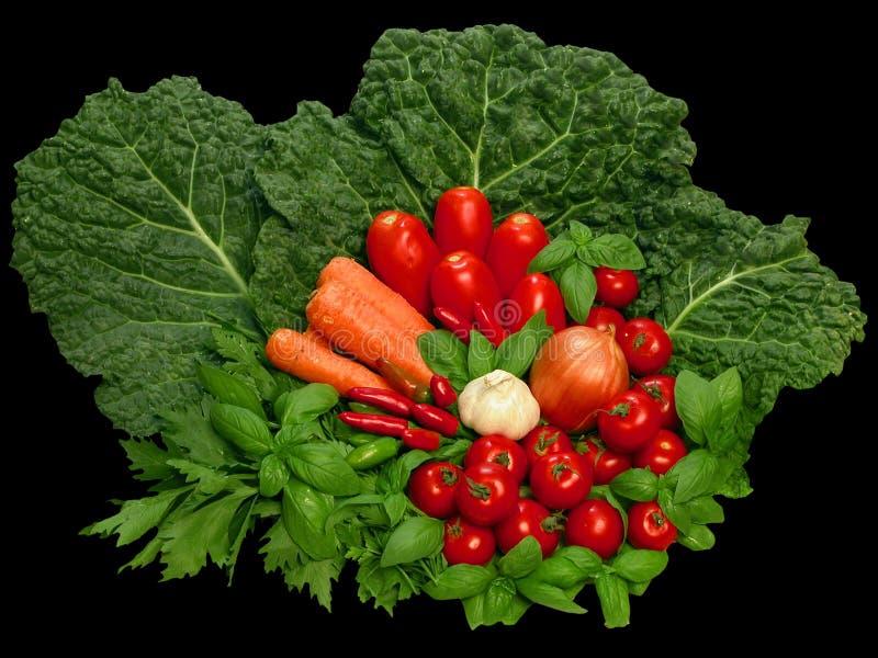 Groupe coloré de vegeta image stock