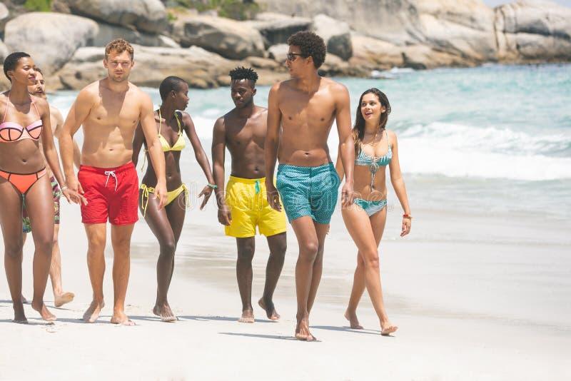Groupe d'amis agissant l'un sur l'autre les uns avec les autres tout en marchant à la plage photographie stock libre de droits