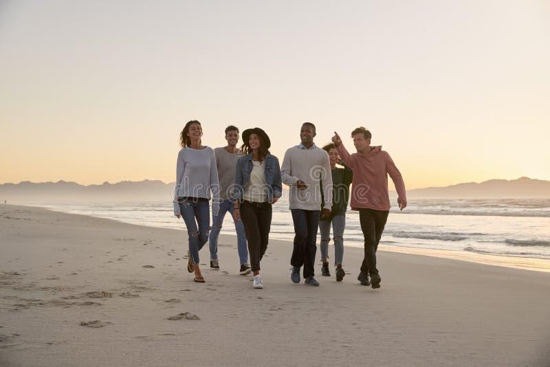 Groupe d'amis sur marcher le long de la plage d'hiver ensemble photographie stock libre de droits