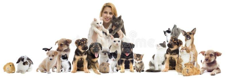 Groupe d'animaux familiers images libres de droits