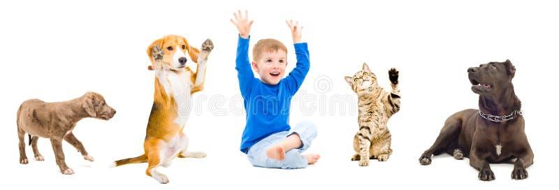 Groupe d'animaux familiers et enfant gais ensemble photo stock