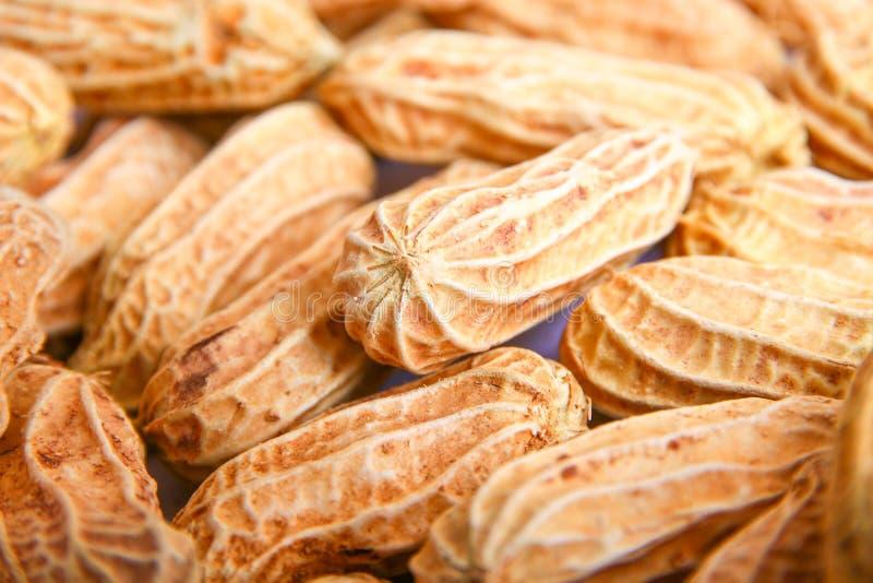 Groupe d'arachide Les noix se ferment vers le haut image libre de droits