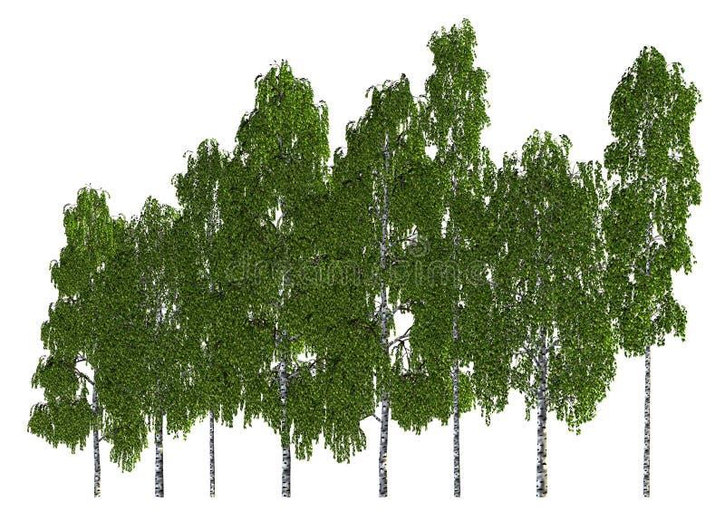 Groupe d'arbres d'isolement sur l'illustration 3d blanche illustration de vecteur