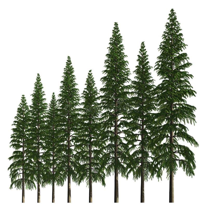 Groupe d'arbres d'isolement sur l'illustration 3d blanche illustration libre de droits