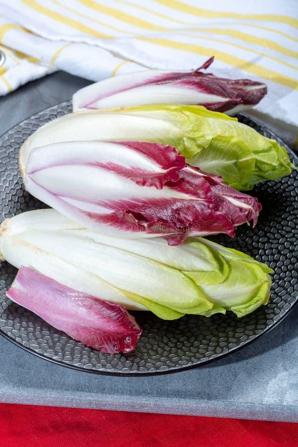 Groupe d'endive belge ou chicorée verte fraîche et légumes rouges de Radicchio, également connu sous le nom de salade de witlof image stock