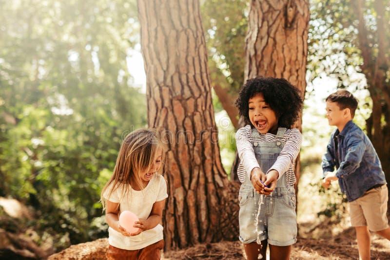 Groupe d'enfants ayant l'amusement dans la forêt photo stock