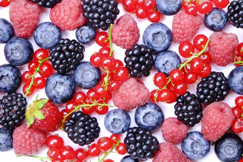Groupe de baies mélangées dans la pile de récolte sur le fond blanc Composition colorée avec la fraise organique fraîche, myrtill photos libres de droits