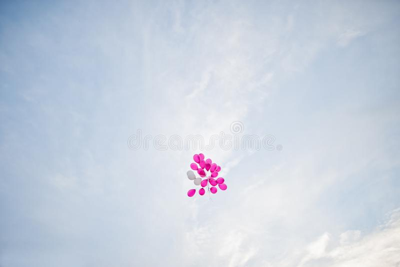 Groupe de ballons roses flottant dans le ciel le jour du mariage images libres de droits