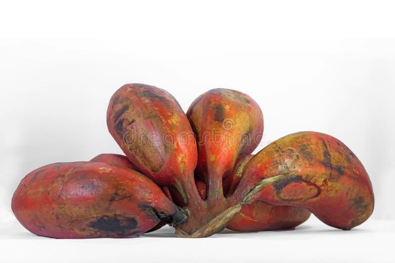 Groupe de banane rouge photo stock