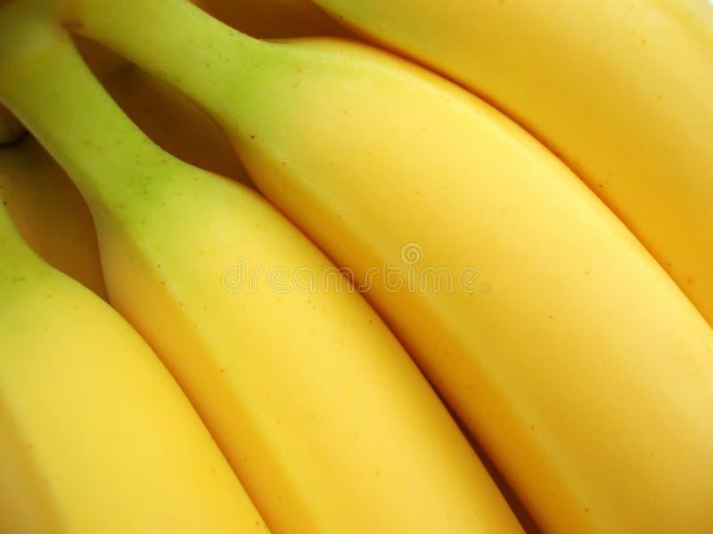 Groupe de bananes jaunes image libre de droits