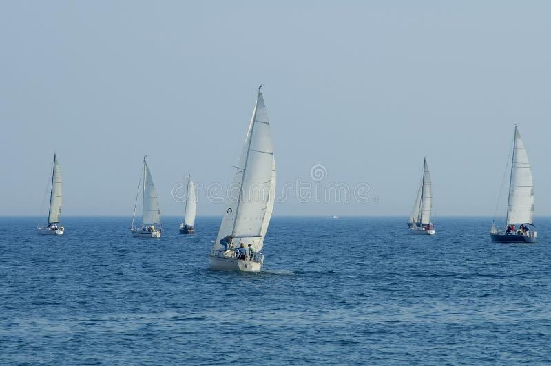 Groupe de bateaux à voiles image libre de droits