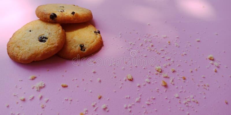 Groupe de biscuits de raisin sec et de quelques biscuits criqués sur le fond rose photos stock