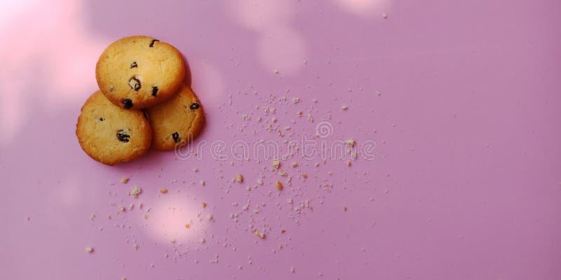Groupe de biscuits de raisin sec et de quelques biscuits criqués sur le fond rose images stock