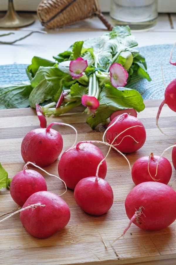 Groupe de côté de portrait de radis rouges au loin images libres de droits