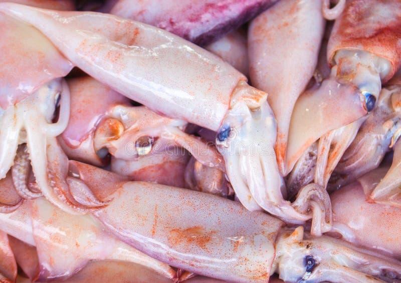Groupe de calmar rose frais sur le marché de fruits de mer Crochet de pêche maritime pour la consommation savoureuse et saine photographie stock