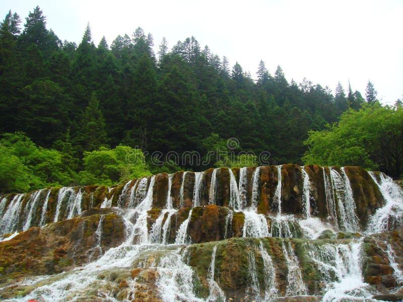 groupe de cascades de vallée de jiuzhai images libres de droits