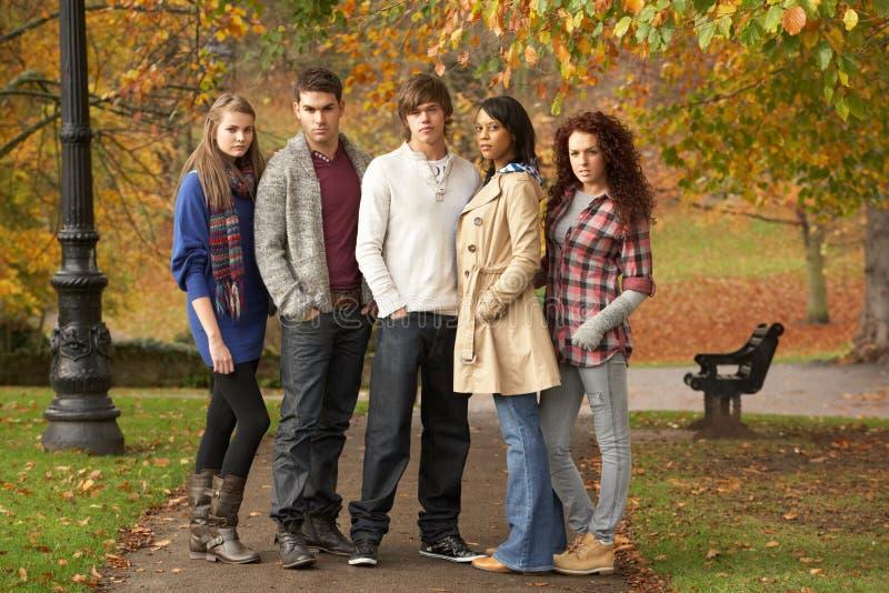 Groupe de cinq amis d'adolescent ayant l'amusement en automne photo stock