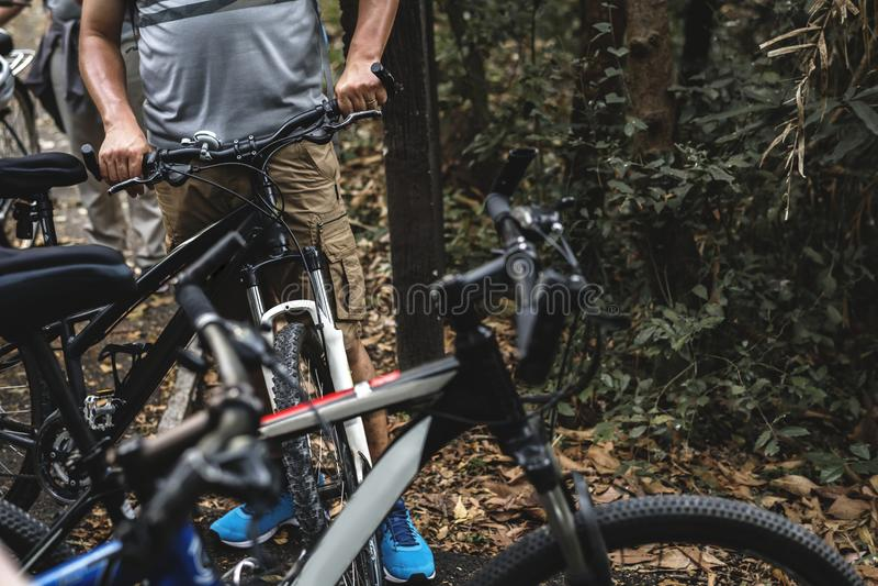 Groupe de cyclistes dans la forêt image libre de droits