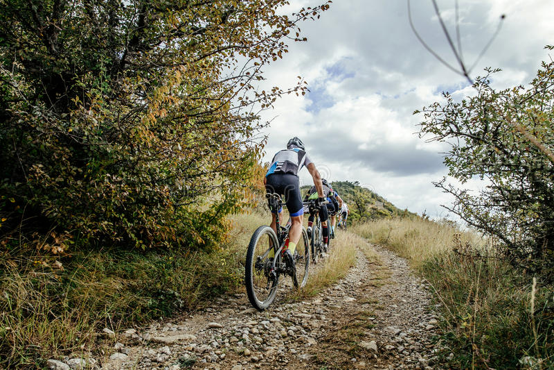 Groupe de cyclistes sur le mountainbike de sports photographie stock libre de droits