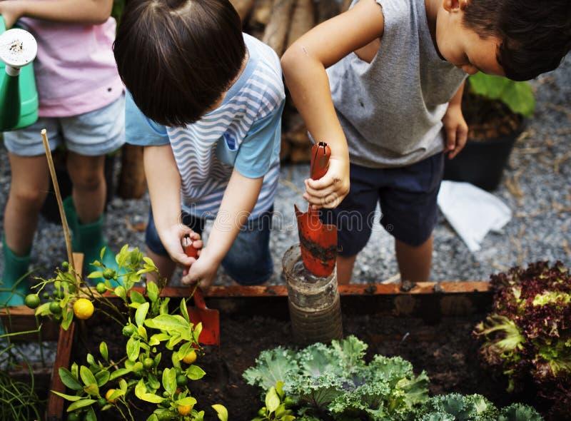 Groupe de diversité de boîte d'arrosage de pelle à jardin d'enfants image libre de droits