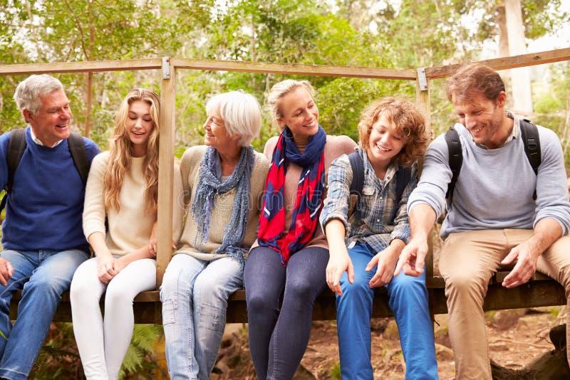 Groupe de famille s'asseyant sur un petit pont dans une forêt images libres de droits