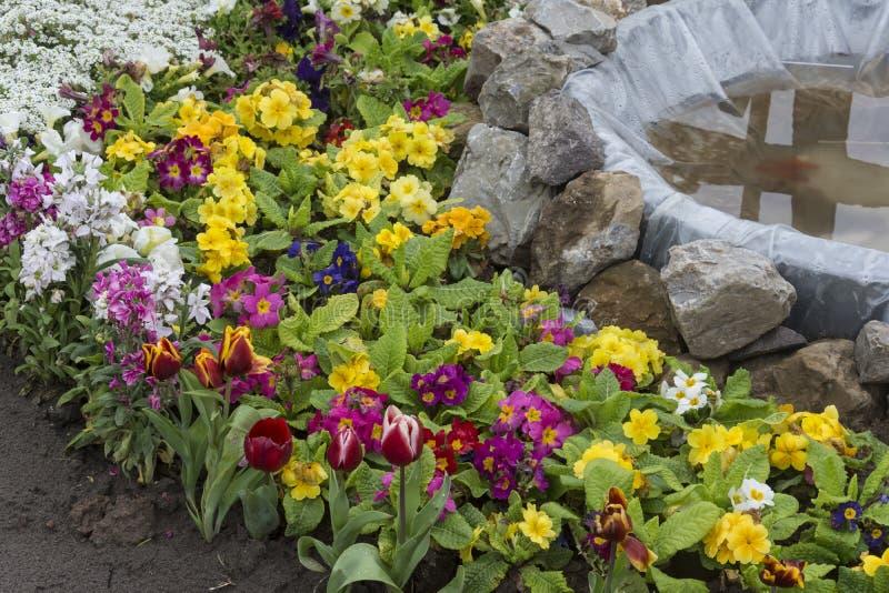 Groupe de fleurs avec la piscine de poissons images stock