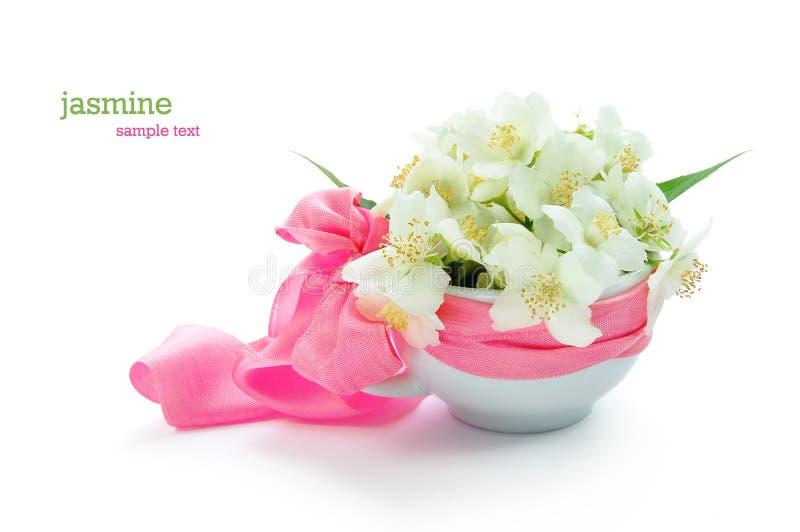 Groupe de fleurs de jasmin photographie stock libre de droits