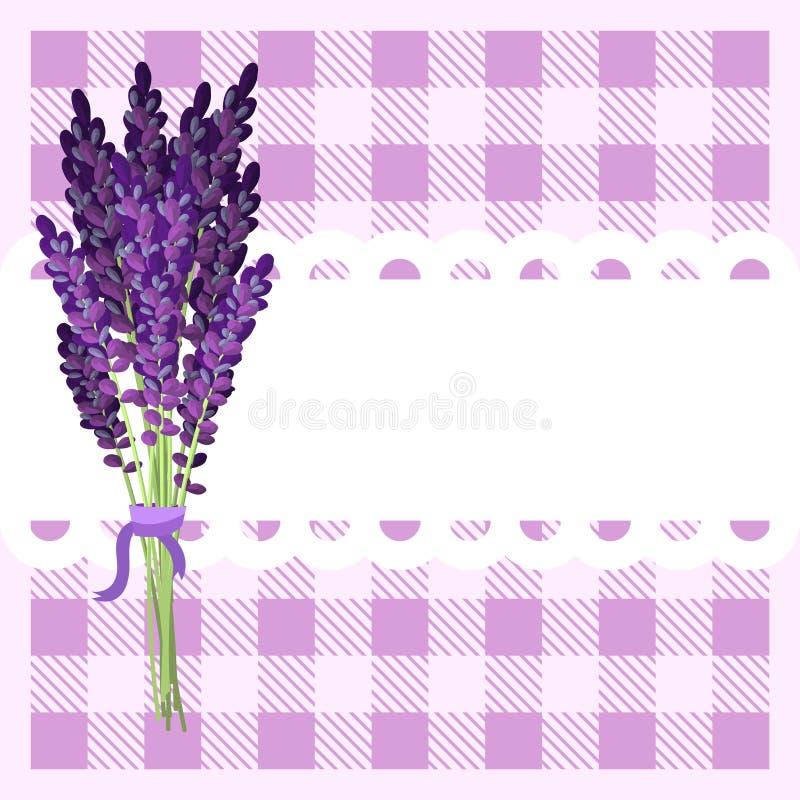Groupe de fleurs de lavande sur le contexte de tartan illustration libre de droits
