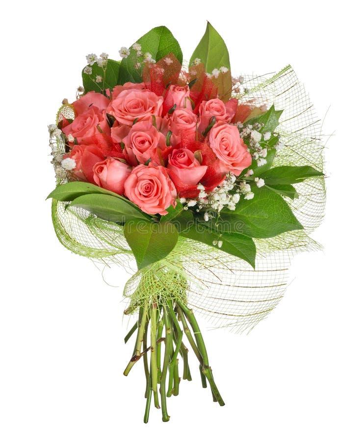 Groupe de fleurs de rose de rose d'isolement sur le blanc images stock