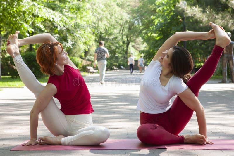 Groupe de forme physique faisant le yoga dans l'arbre de pose de parc workout photos libres de droits