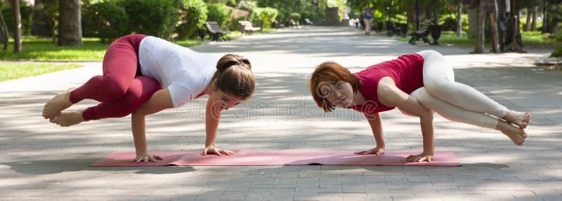 Groupe de forme physique faisant le yoga dans l'arbre de pose de parc workout photos stock