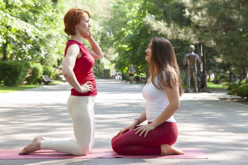 Groupe de forme physique faisant le yoga dans l'arbre de pose de parc workout image libre de droits