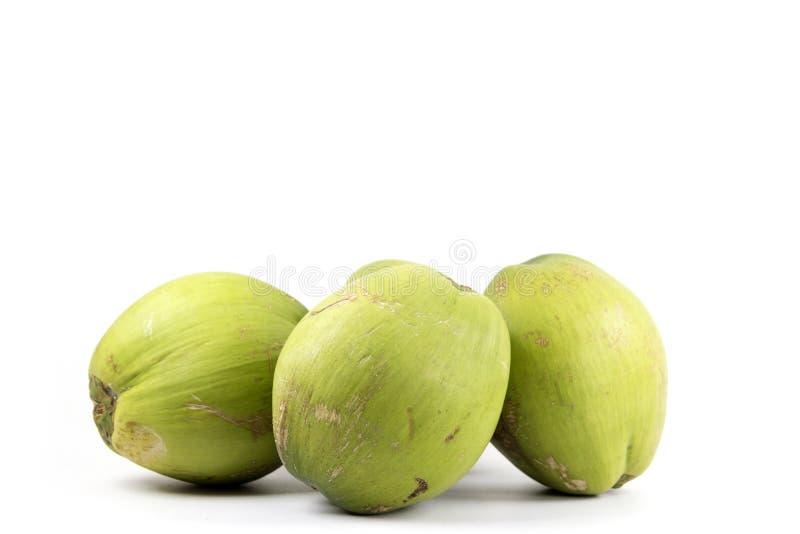 Groupe de fruits verts de noix de coco image libre de droits