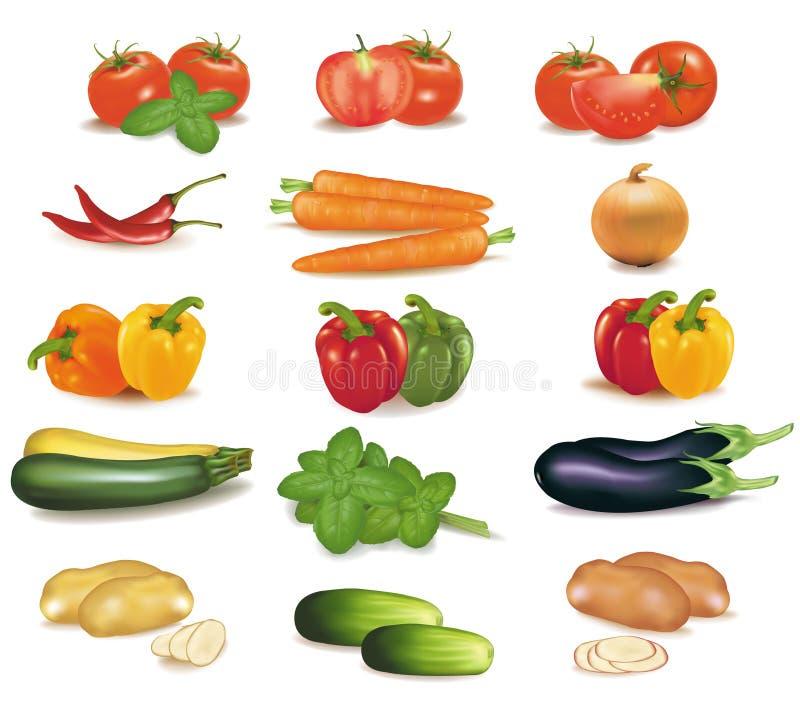 Groupe de légumes. illustration libre de droits