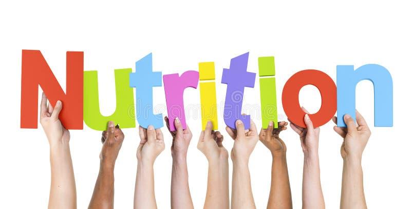 Groupe de mains multi-ethniques tenant la nutrition image libre de droits