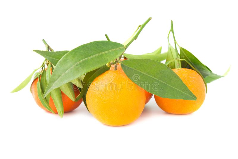 Groupe de mandarines oranges avec les feuilles vertes image stock