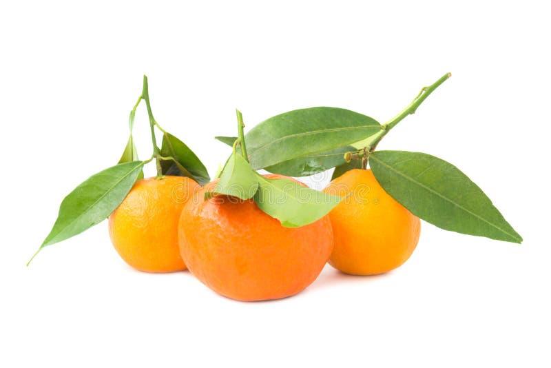Groupe de mandarines oranges avec les feuilles vertes images stock