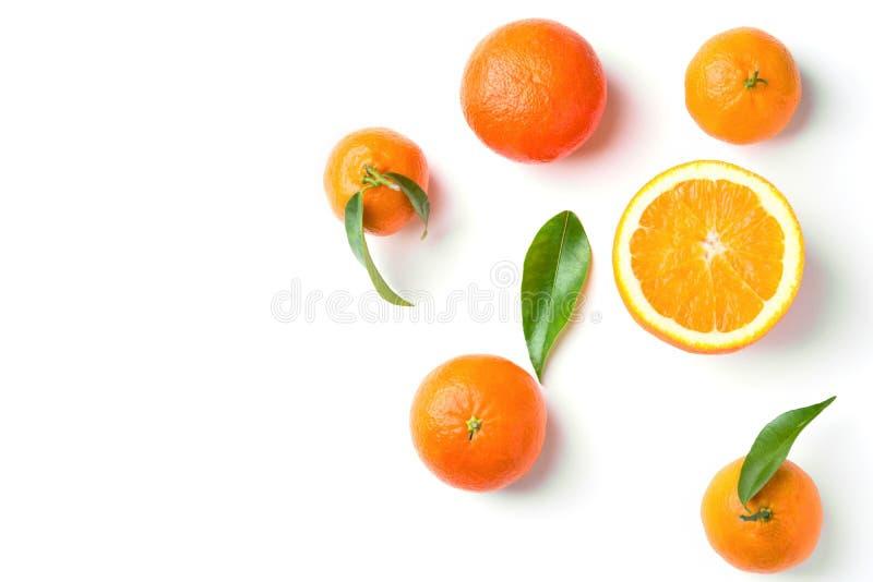 Groupe de mandarines organiques juteuses mûres d'oranges sur la branche avec les feuilles vertes sur le fond blanc Configuration  photos libres de droits