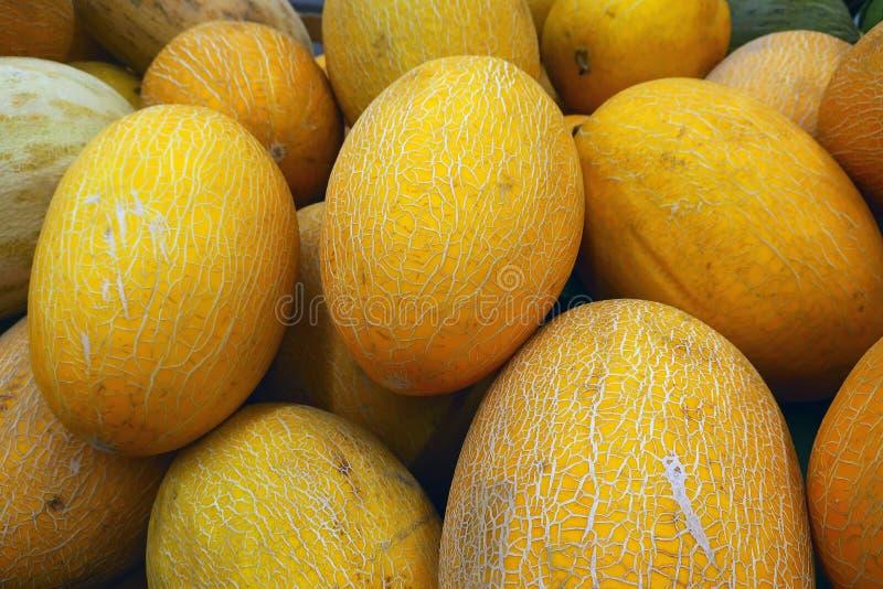 Groupe de melons jaunes juteux photographie stock
