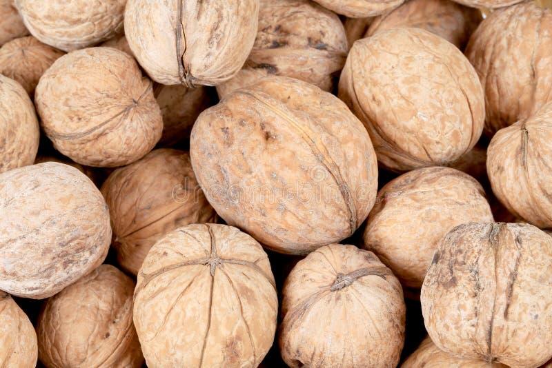 Groupe de noix entières. photo stock
