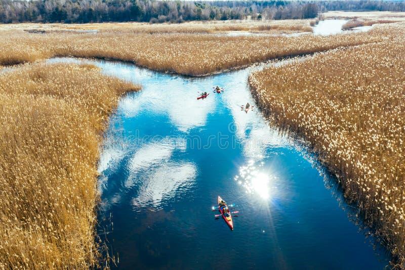 Groupe de personnes dans des kayaks parmi des roseaux sur la rivi?re d'automne photos stock