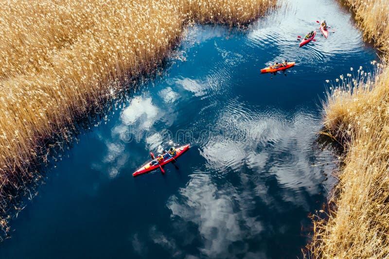 Groupe de personnes dans des kayaks parmi des roseaux sur la rivi?re d'automne photo libre de droits