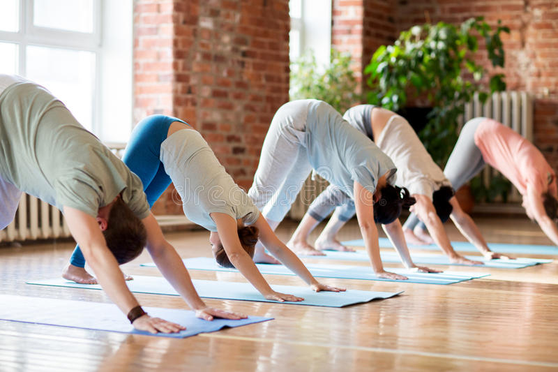 Groupe de personnes faisant la pose de chien de yoga au studio images stock