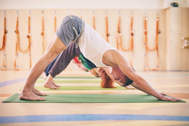 Groupe de personnes faisant la pose orientée vers le bas de chien de yoga sur des tapis au studio image stock