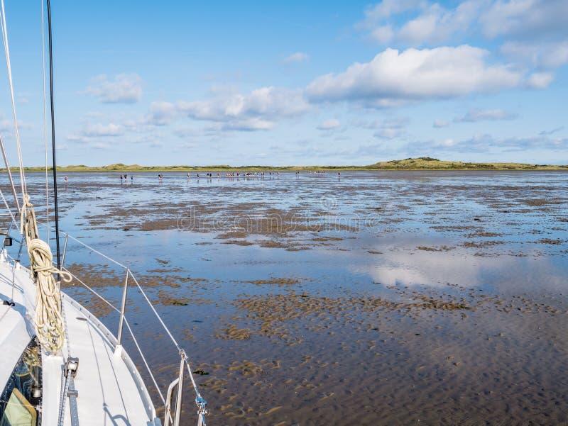 Groupe de personnes mudflat augmentant sur Waddensea à marée basse de Frise à l'île occidentale Ameland, Pays-Bas de Frisian images stock