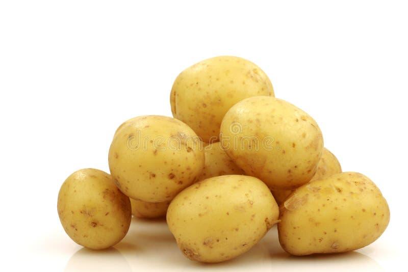Groupe de petites pommes de terre photographie stock