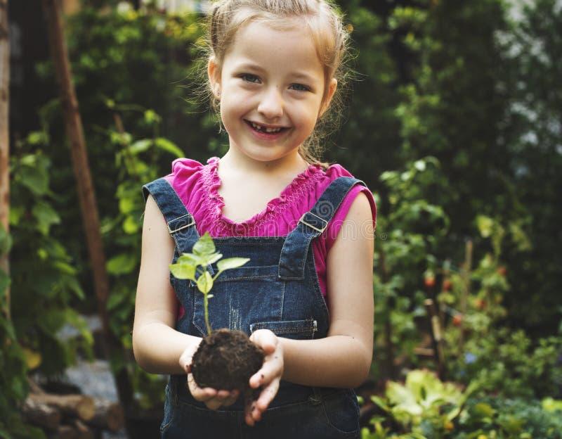 Groupe de plantation environnementale de mains d'enfants de conservation images stock