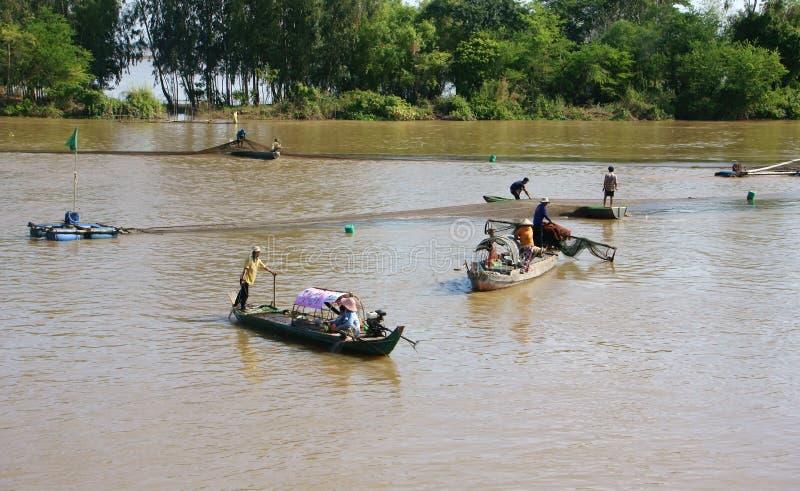 Groupe de poissons contagieux de pêcheur par le filet sur la rivière photographie stock libre de droits